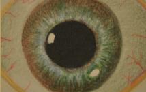 ojo-wilson